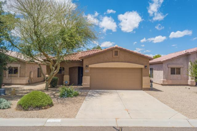 30240 N Desert Willow Boulevard, San Tan Valley, AZ 85143 (MLS #5930762) :: The Everest Team at My Home Group