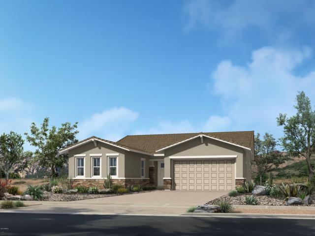 18129 W Cactus Flower Drive, Goodyear, AZ 85338 (MLS #5930763) :: Home Solutions Team