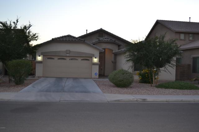 6808 N 72ND Drive, Glendale, AZ 85303 (MLS #5930769) :: Riddle Realty