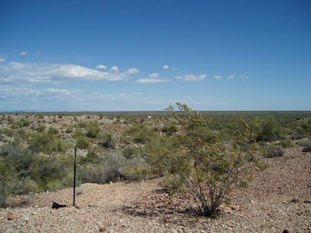 29701 W Lone Mountain Road, Unincorporated County, AZ 85361 (MLS #5930774) :: Conway Real Estate