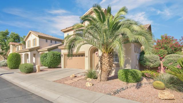 471 N Eucalyptus Place, Chandler, AZ 85225 (MLS #5930778) :: Riddle Realty