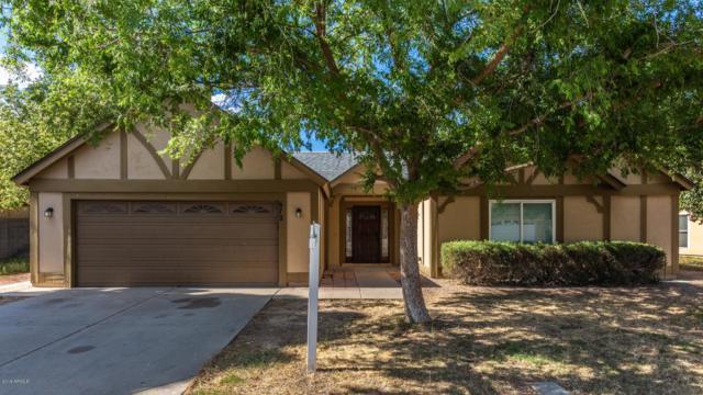 672 E Estrella Drive, Chandler, AZ 85225 (MLS #5930790) :: CC & Co. Real Estate Team