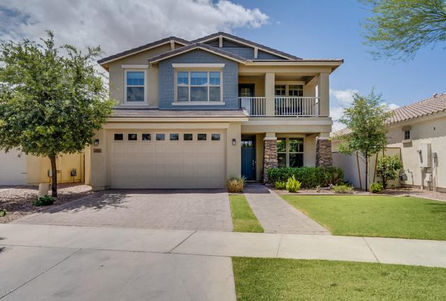 10353 E Hawk Avenue, Mesa, AZ 85212 (MLS #5930800) :: Team Wilson Real Estate