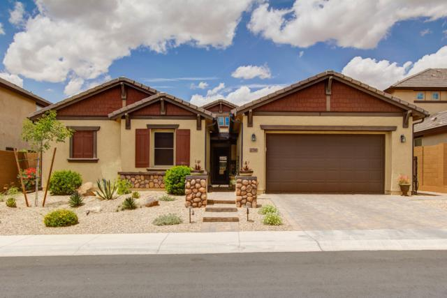 27262 N 81ST Lane, Peoria, AZ 85383 (MLS #5930802) :: Team Wilson Real Estate