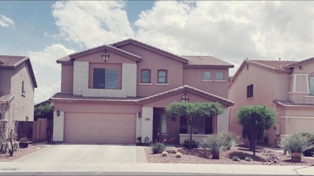 14795 W Larkspur Drive, Surprise, AZ 85379 (MLS #5930814) :: Team Wilson Real Estate