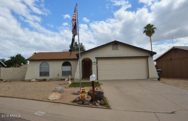 3509 E Everett Drive, Phoenix, AZ 85032 (MLS #5930818) :: Team Wilson Real Estate