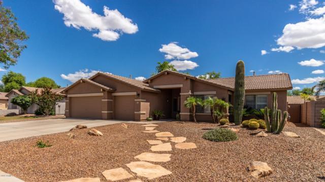 2465 E Oakland Street, Gilbert, AZ 85295 (MLS #5930835) :: Team Wilson Real Estate