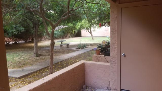 3131 W Cochise Drive #141, Phoenix, AZ 85051 (MLS #5930837) :: CC & Co. Real Estate Team