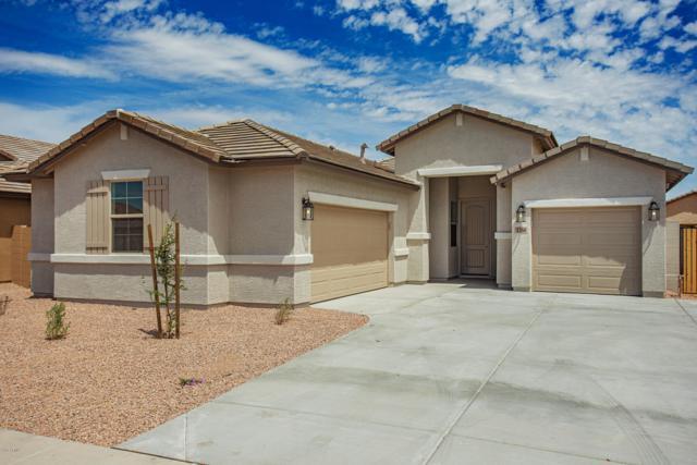 1260 E Judi Street, Casa Grande, AZ 85122 (MLS #5930838) :: The Kenny Klaus Team