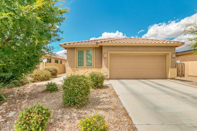12212 W Saguaro Lane, El Mirage, AZ 85335 (MLS #5930866) :: CC & Co. Real Estate Team