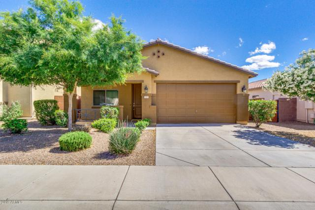 135 W Dragon Tree Avenue, San Tan Valley, AZ 85140 (MLS #5930872) :: The Everest Team at My Home Group