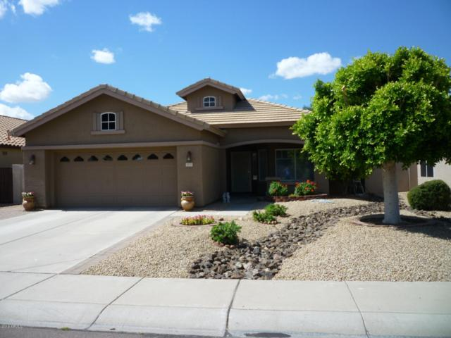 8153 W Ross Avenue, Peoria, AZ 85382 (MLS #5930882) :: Riddle Realty