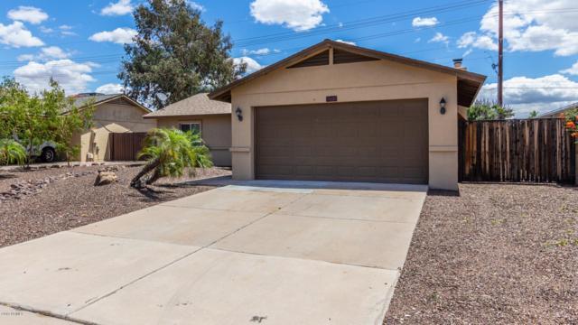 11437 N 91ST Drive, Peoria, AZ 85345 (MLS #5930903) :: My Home Group