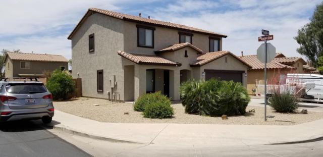 44699 W Paitilla Lane, Maricopa, AZ 85139 (MLS #5930906) :: Team Wilson Real Estate