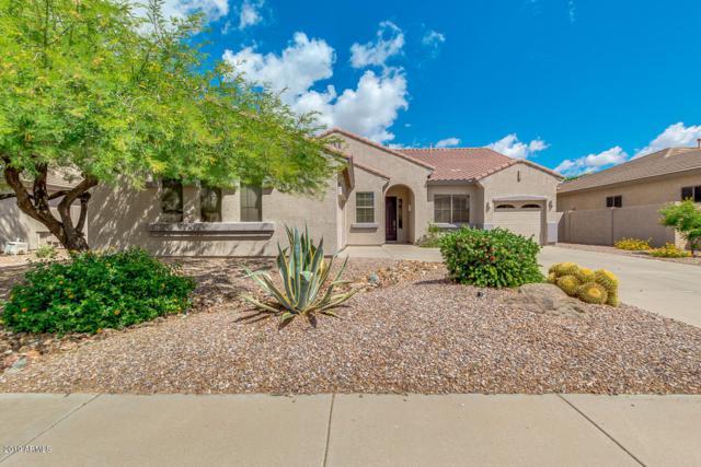 2628 E Firestone Drive, Chandler, AZ 85249 (MLS #5930923) :: CC & Co. Real Estate Team