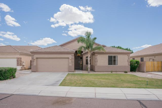 9223 W Yukon Drive, Peoria, AZ 85382 (MLS #5930942) :: Keller Williams Realty Phoenix