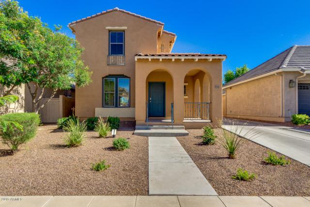 15333 W Wethersfield Road, Surprise, AZ 85379 (MLS #5930965) :: Home Solutions Team