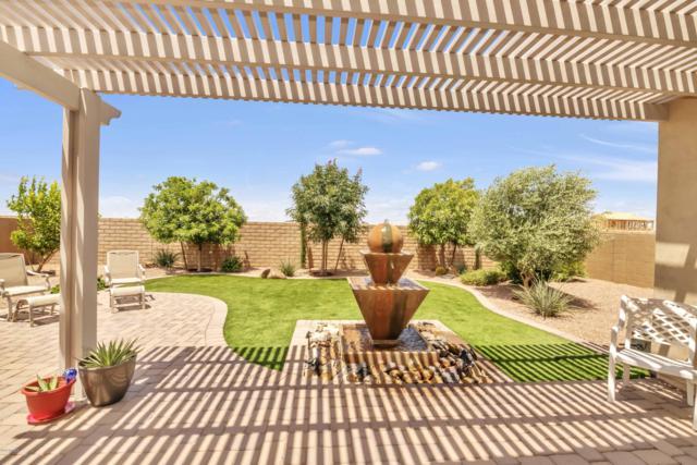 5538 S Abbey, Mesa, AZ 85212 (MLS #5930975) :: CC & Co. Real Estate Team
