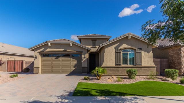 20423 E Arrowhead Trail, Queen Creek, AZ 85142 (MLS #5930978) :: Team Wilson Real Estate