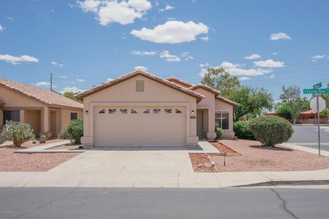 12017 W Charter Oak Road, El Mirage, AZ 85335 (MLS #5930984) :: Arizona 1 Real Estate Team