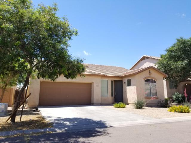 1131 E Catino Street, San Tan Valley, AZ 85140 (MLS #5930988) :: The Everest Team at My Home Group