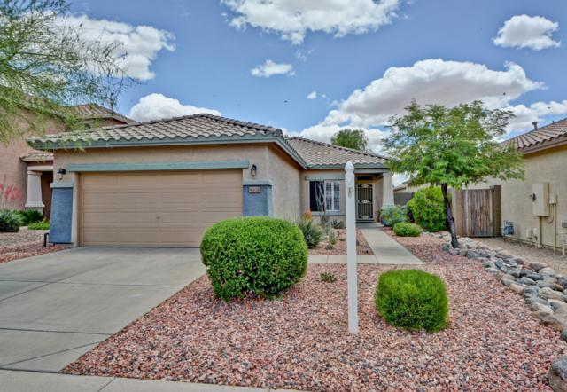 40629 N Apollo Way, Anthem, AZ 85086 (MLS #5930994) :: Riddle Realty