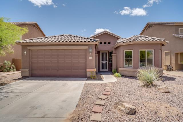1263 E Prickly Pear Street, Casa Grande, AZ 85122 (MLS #5931002) :: Team Wilson Real Estate