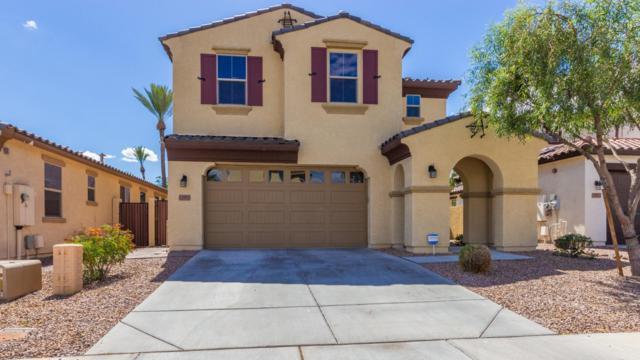12952 N 94TH Avenue, Peoria, AZ 85381 (MLS #5931009) :: Home Solutions Team