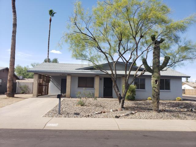 1002 W Michelle Drive, Phoenix, AZ 85023 (MLS #5931021) :: Team Wilson Real Estate