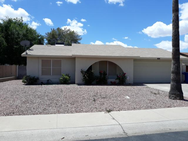 709 W Nopal Place, Chandler, AZ 85225 (MLS #5931031) :: Riddle Realty