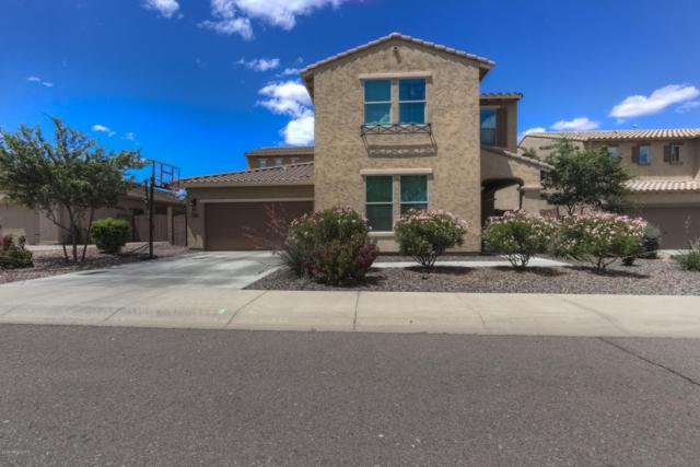4440 W Goldmine Mountain Drive, Queen Creek, AZ 85142 (MLS #5931037) :: Team Wilson Real Estate