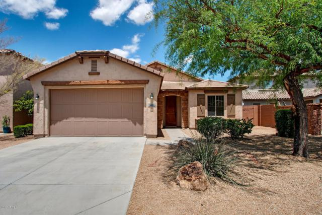 9026 W Pinnacle Vista Drive, Peoria, AZ 85383 (MLS #5931040) :: Team Wilson Real Estate