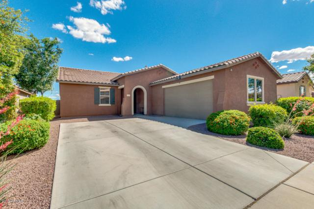 15807 W Shaw Butte Drive, Surprise, AZ 85379 (MLS #5931043) :: Home Solutions Team