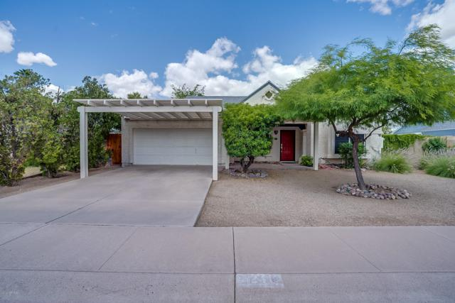 7124 S Alder Drive, Tempe, AZ 85283 (MLS #5931044) :: Team Wilson Real Estate