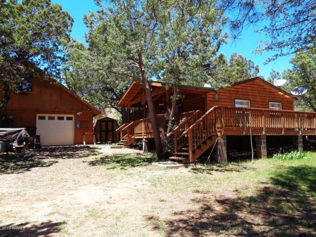 338 S Park Road, Payson, AZ 85541 (MLS #5931045) :: Team Wilson Real Estate