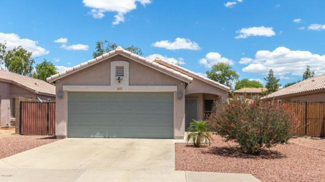 16717 N 157TH Avenue, Surprise, AZ 85374 (MLS #5931071) :: Home Solutions Team