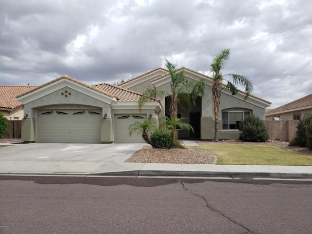 8646 W Irma Lane, Peoria, AZ 85382 (MLS #5931083) :: Home Solutions Team