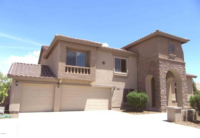11620 E Starflower Drive, Chandler, AZ 85249 (MLS #5931094) :: Riddle Realty