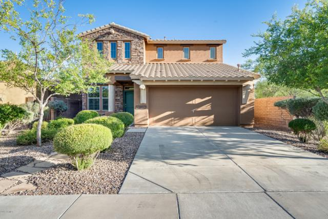 13651 W Tyler Trail, Peoria, AZ 85383 (MLS #5931115) :: Home Solutions Team