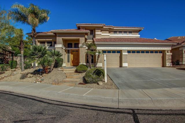 6546 W Via Montoya Drive, Glendale, AZ 85310 (MLS #5931117) :: Team Wilson Real Estate