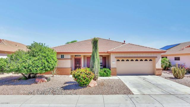17664 W Skyline Drive, Surprise, AZ 85374 (MLS #5931121) :: Home Solutions Team