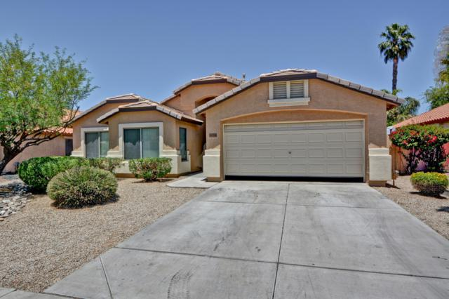16194 W Magnolia Street, Goodyear, AZ 85338 (MLS #5931137) :: The Luna Team