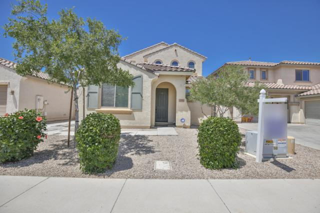 1774 W Pelican Drive, Chandler, AZ 85286 (MLS #5931139) :: Home Solutions Team