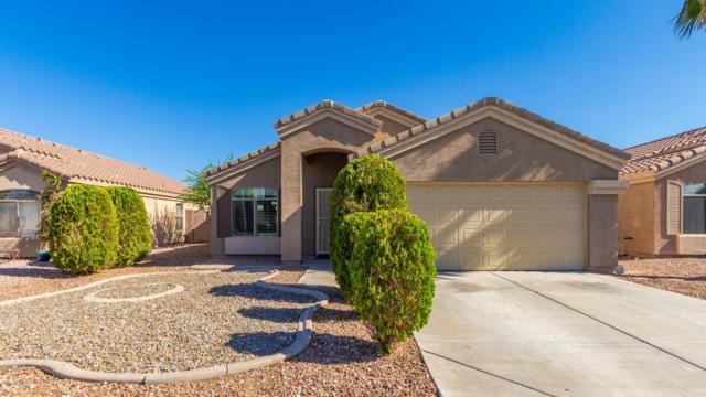 16075 W Vogel Avenue, Goodyear, AZ 85338 (MLS #5931157) :: Conway Real Estate