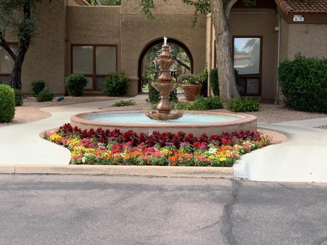 8256 E Arabian Trail #133, Scottsdale, AZ 85258 (MLS #5931162) :: Santizo Realty Group