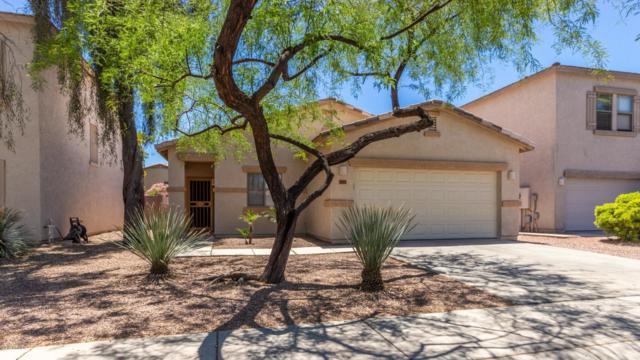 16823 W Marshall Lane, Surprise, AZ 85388 (MLS #5931167) :: Keller Williams Realty Phoenix