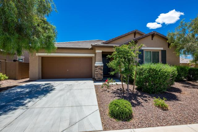 21457 W Terri Lee Drive, Buckeye, AZ 85396 (MLS #5931179) :: The Luna Team