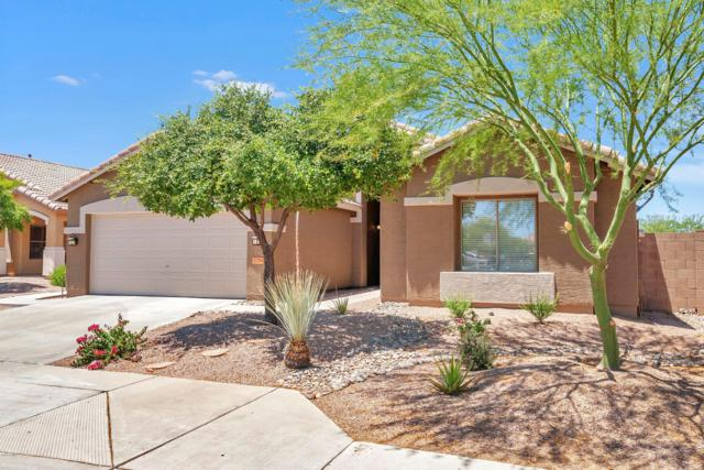 32764 N Cat Hills Avenue, Queen Creek, AZ 85142 (MLS #5931185) :: Team Wilson Real Estate