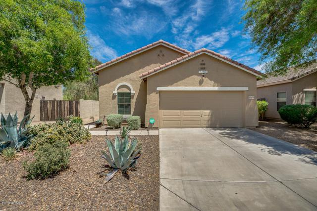 33431 N Wash View Road, Queen Creek, AZ 85142 (MLS #5931209) :: Team Wilson Real Estate