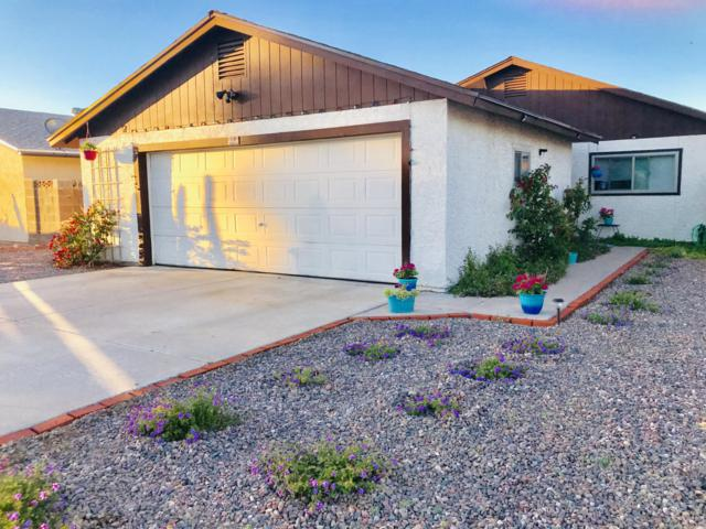 741 W 5TH Avenue, Apache Junction, AZ 85120 (MLS #5931234) :: Yost Realty Group at RE/MAX Casa Grande